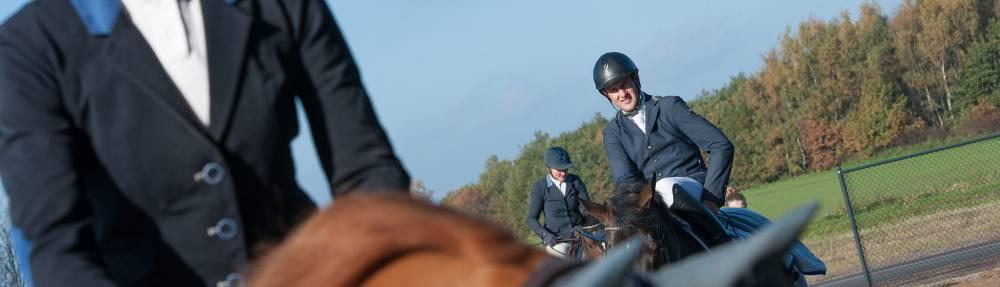 Vacature hippische sport paarden pony's