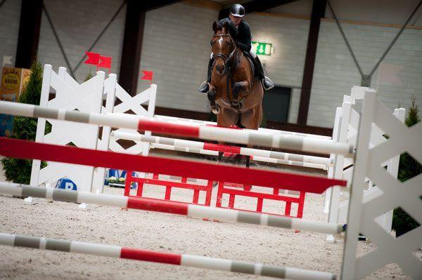 de peelbergen, equestrian centre de peelbergen, limburg, ch, paarden, horses, springsport
